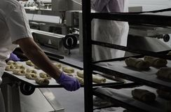 Bröddanandeprocess Arkivbilder