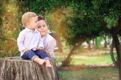 Bröder i parkera, Jr sitter på stubben, storebror bredvid royaltyfria foton