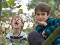 bröder som leker två Royaltyfria Bilder