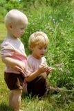 Bröder som väljer blommor Arkivbilder