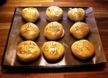brödhamburgareoregano Fotografering för Bildbyråer