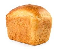 Brödtegelstennärbild på ett vitt isolerat royaltyfri fotografi