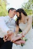 bröllop Arkivfoto