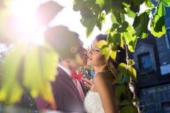 Bröllop brud, brudgum, kyss Royaltyfria Foton