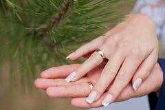 Bröllop brud, par, brudgum, cirkel, förälskelse, koppling, finger, make, förbindelse, folk, vit, ceremoni, hand arkivbild