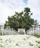 bröllop för brudceremoniblomma Royaltyfria Foton