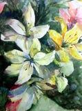 Bröllop för liljor för blommor för den blom- buketten för modellen för abstrakt begrepp för vattenfärgkonstbakgrund texturerade t Arkivfoton