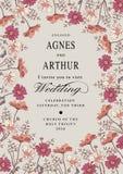 bröllop för romantiskt symbol för inbjudan för bakgrundseleganshjärtor varmt Härlig blommakamomill för eps-hälsning för 10 kort t