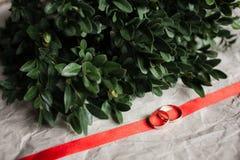bröllop Vigselringar på kraft royaltyfria bilder