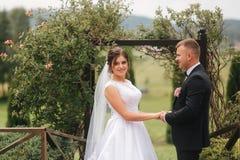 Bröllopceremoni utanför bara gift Bakgrund av berg arkivbild