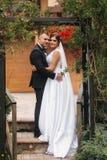 Bröllopceremoni utanför bara gift Bakgrund av berg royaltyfri bild