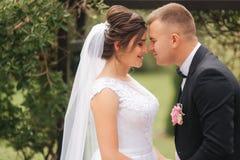 Bröllopceremoni utanför bara gift Bakgrund av berg stående av brudgummen och bruden arkivfoto