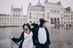 Bröllopdag i Budapest Arkivfoton