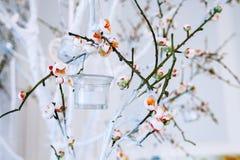 Bröllopdekor, vit- och gräsplanträdfilial med att blomstra knoppar, blomningträdfilialer med vita blommor och en girland av candl fotografering för bildbyråer