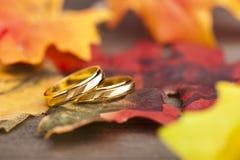 Bröllopförlovningsring Fotografering för Bildbyråer