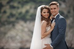 Bröllopfotografi av ett ungt par, bruden och brudgummen i ett bergsområde i sommar arkivbilder