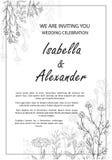 Bröllopinbjudanramar med örter och lösa blommor arkivfoton