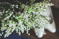 Bröllopliljor Royaltyfria Foton
