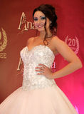 Bröllopmodeshow Royaltyfria Bilder