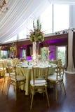 Bröllopmottagande med purpurfärgad uplighting Royaltyfri Bild