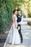 Bröllopsinnesrörelser Arkivbilder