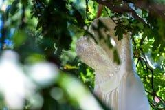 Bröllopsklänning på ett träd Arkivfoto