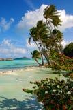 Bröllopsresa i Bora Bora Arkivbild