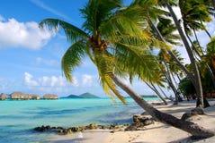 Bröllopsresa i Bora Bora Arkivbilder