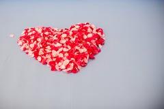 Bröllopsresaföljet som gifta sig säng som överträffades med rosa kronblad, ställde in till hjärta från för valentin Royaltyfria Bilder