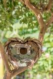 Bröllopsresaföljet - wodden fågelträdhuset i trädgård i en form av Royaltyfria Foton