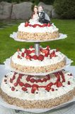 Bröllopstårta med jordgubbar Royaltyfri Bild
