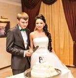Bröllopstårta med statyetter av pingvin Royaltyfria Bilder