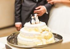 Bröllopstårta med statyetter av pingvin upptill Royaltyfri Fotografi