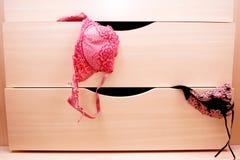 bröstkorg Fotografering för Bildbyråer