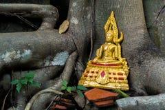 Bröt Buddha Arkivbild