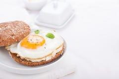 Brötchen mit Ei, Hüttenkäse und frischem Basilikum Stockfotos