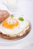 Brötchen mit Ei, Hüttenkäse und frischem Basilikum Stockfoto