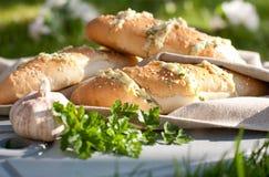Brötchen mit Käse, grünen Kräutern und Knoblauch Lizenzfreies Stockbild