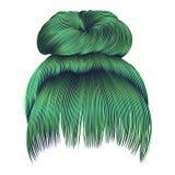 Brötchenhaare mit Frauen der Franse grüne Farbarbeiten Schönheitsart um lizenzfreie abbildung