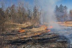 Brûlure commandée dans une prairie indigène photographie stock libre de droits