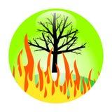 Brûlure de forêt Photos stock