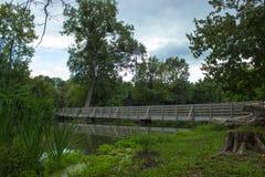 Brücke über dem Fluss und dem hohen Baum Lizenzfreie Stockbilder