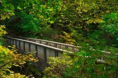 Brücke über den engen Tälern Stockfotografie