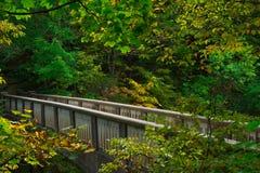 Brücke über den engen Tälern Stockfotos