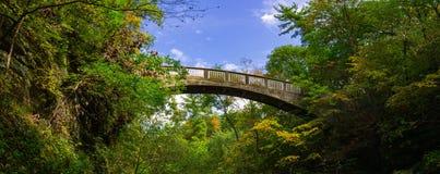 Brücke über den unteren engen Tälern Lizenzfreies Stockfoto