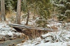 Brücke über einem Nebenfluss im Wald Lizenzfreie Stockfotografie