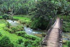 Brücke über einem Nebenfluss umgeben durch Dschungel lizenzfreies stockfoto
