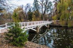 Brücke über Fluss Stockbilder