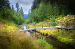 Brücke über kleinem Nebenfluss Stockbild