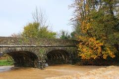 Brücke über Muddy Stream Lizenzfreie Stockfotos